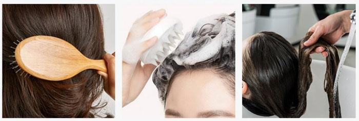 Безсульфатный шампунь с розмарином AROMATICA Rosemary Scalp Scaling Shampoo фото 5 | Sweetness корейская косметика