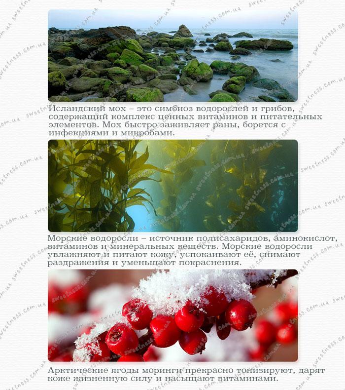 гель для увлажнения The Saem Iceland Hydrating Soothing Gel фото 3 | Sweetness